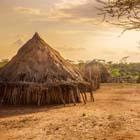Adoption of Villages
